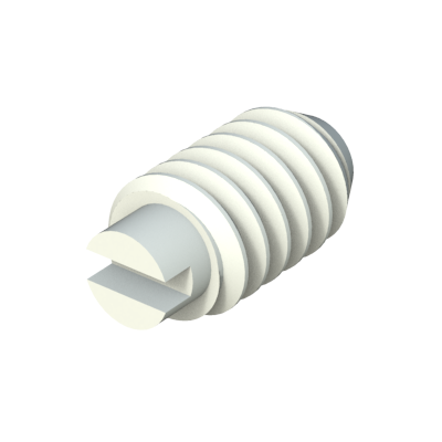 Set slotted screw